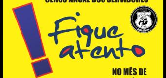 CENSO ANUAL DOS SERVIDORES